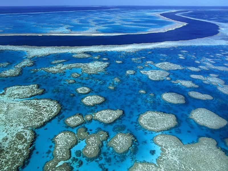 Большой Барьерный риф 1
