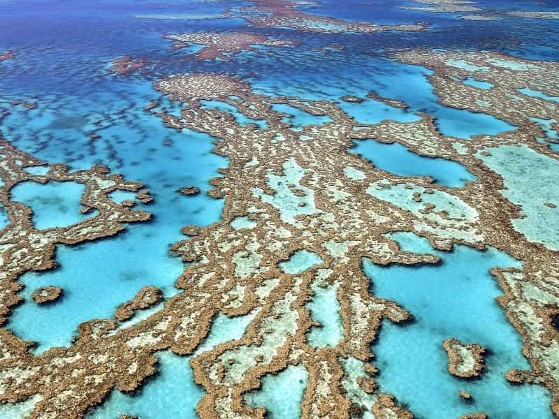 Большой Барьерный риф 3
