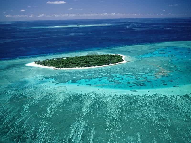 Большой Барьерный риф 5