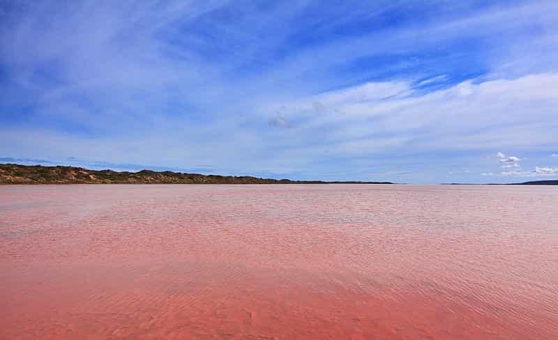 Розовое озеро Hilier 3