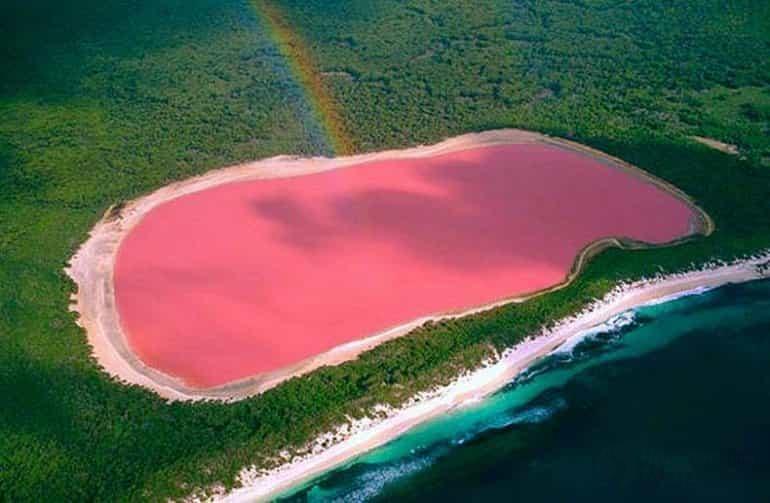 Розовое озеро Hilier 4